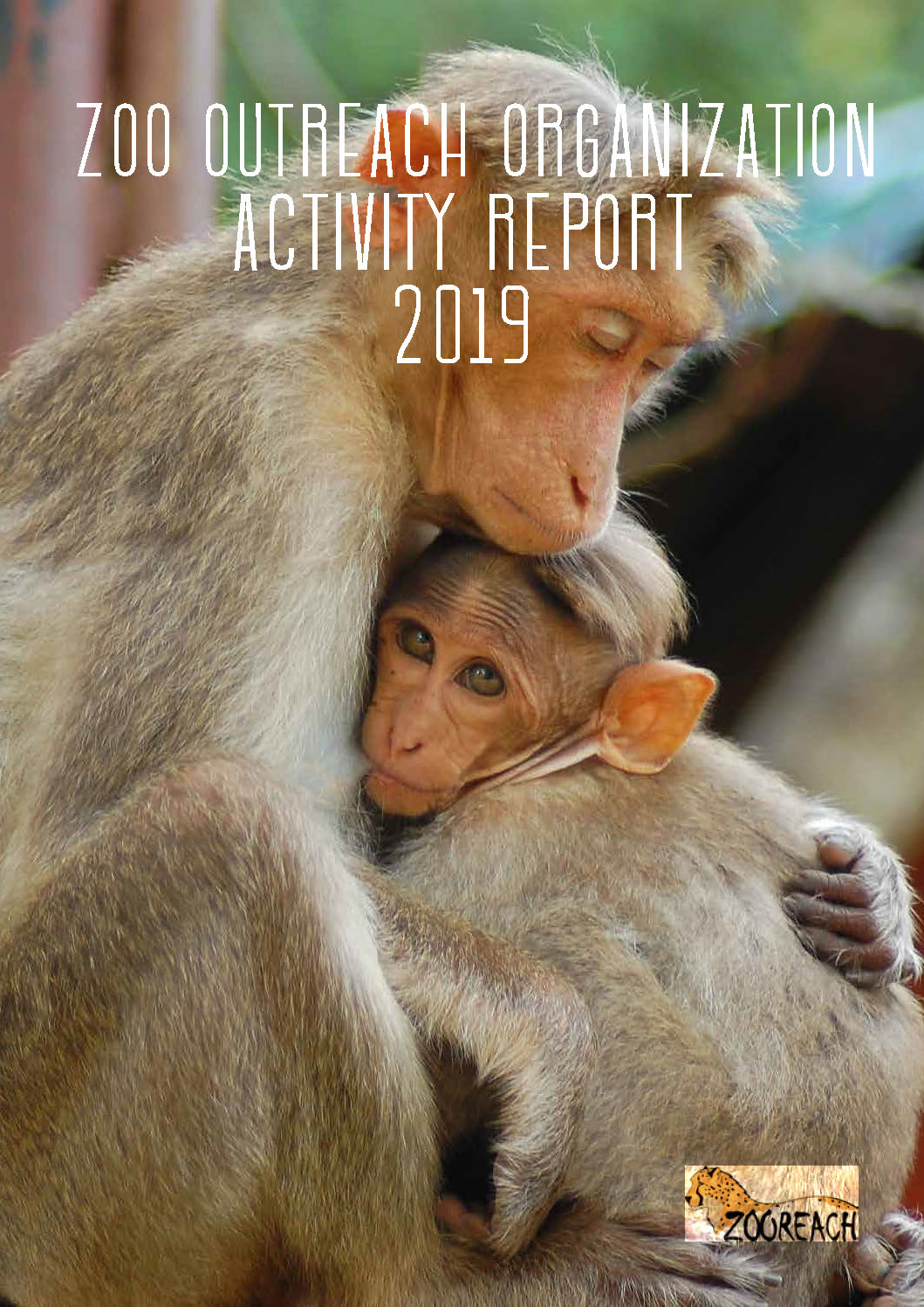 ZooActivityReport2019